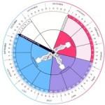 Perfect OB Wheel, la ruota della gravidanza digitale