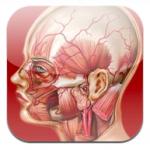 Nuovi aggiornamenti per le applicazioni Atlante di Anatomia e iFarmaci