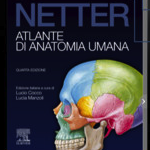 Netter iPad italiano