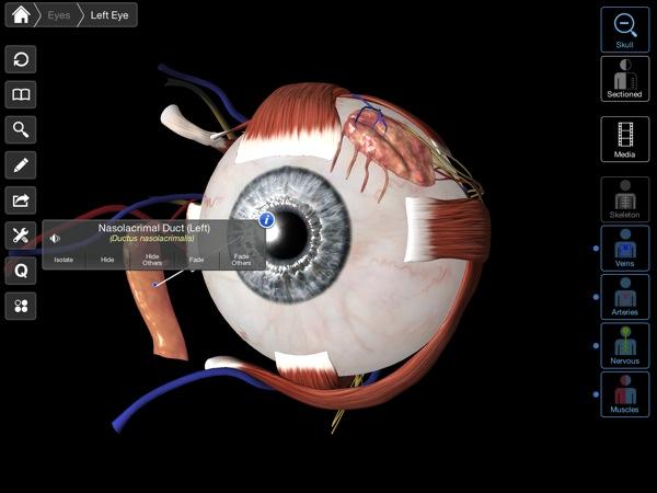 Eye - Practical Series recensione mobimed_10
