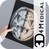 Head Radiology App icona_1